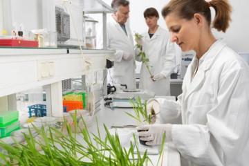 Cơ hội đi du học Nhật Bản ngành Công nghệ sinh học