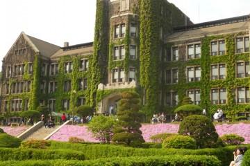 Đại học Yonsei: Trường tư thục lâu đời nhất Hàn Quốc