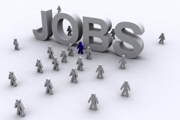 Giật mình với cách tuyển dụng lao động của người Nhật