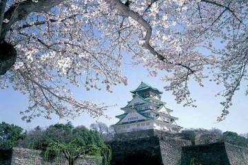 Du học Nhật Bản: Học viện Nhật ngữ Kasuga