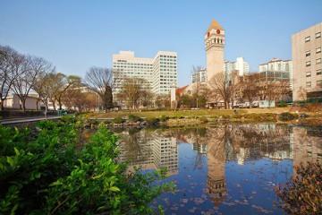"""Học bổng """"khủng"""" trường Đại học Sejong – Hàn Quốc"""