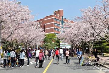 Hàn Quốc thi triển nhiều chính sách thu hút du học sinh quốc tế