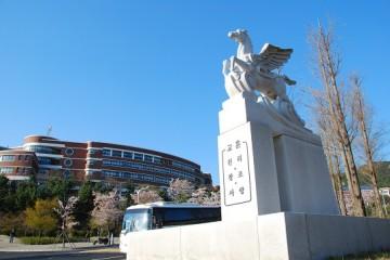 Đến Busan du học Hàn Quốc cùng Đại học Silla