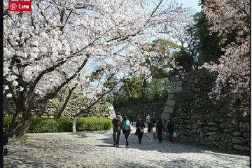 Thông tin tuyển sinh du học Nhật Bản năm 2017 tại Học viện Quốc tế Fukuoka