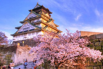 Nên chọn trường Nhật ngữ nào khi du học tại Osaka?