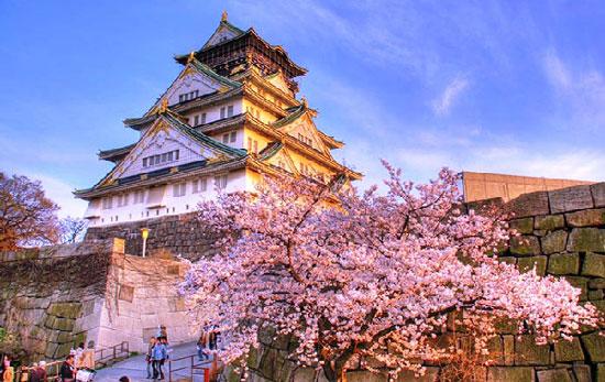 Nên chọn trường Nhật ngữ nào khi du học tại khu vực Osaka?