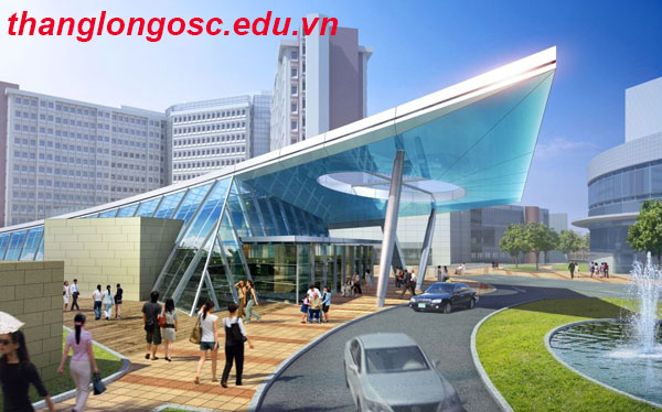 Du học Hàn Quốc ngành Quốc tế học