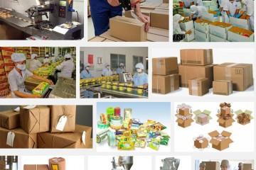 Việc làm tại Nhật Bản – Đóng gói công nghiệp tại Chiba lương 30 triệu