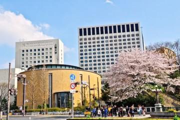 Cách lựa chọn trung tâm du học Nhật Bản uy tín tại Hà Nội