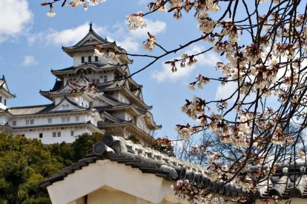 Lâu đài Himeji (Hyogo)