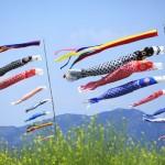 Lễ hội cá chép Koinobori