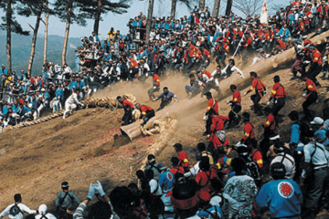 Lễ hội Onbashira Matsuri Nhật Bản