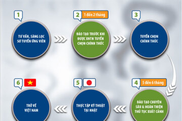 Quy trình đi Nhật 2021 chính qua 6 bước như thi tuyển, đào tạo
